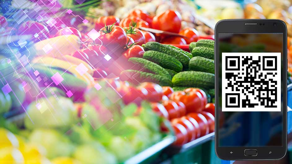 Blockchain technology for the food industrye