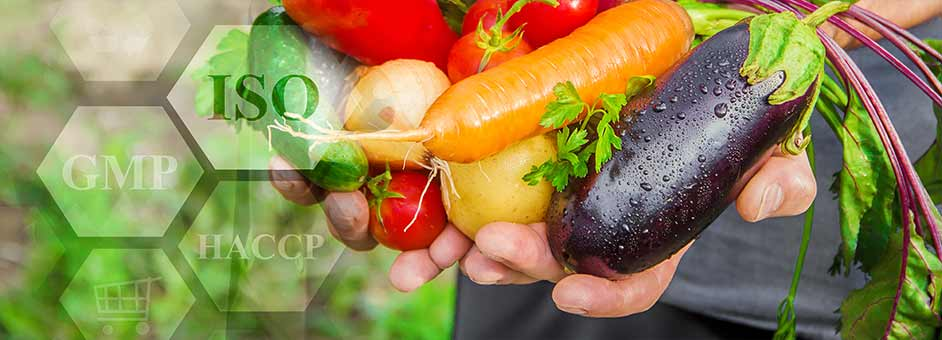 Agri-technology in food exports post COVID 19