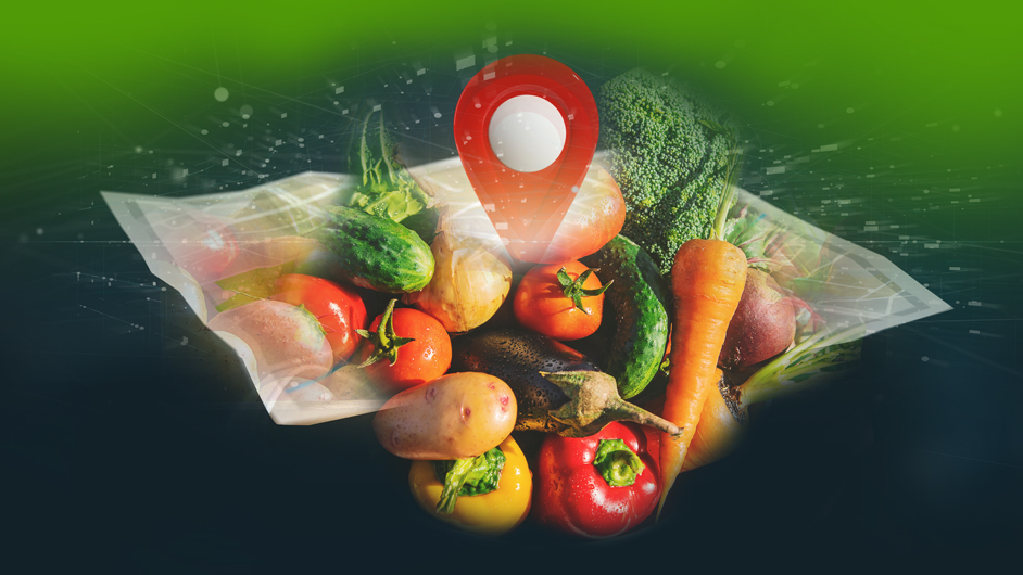 The Global Food Industry