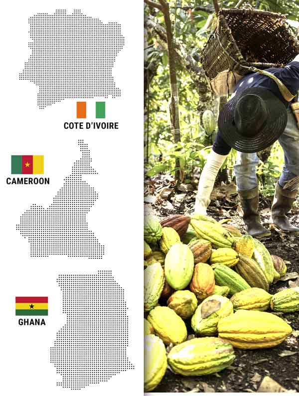 Cargill Cocoa and Chocolate – Cote d'Ivoire, Cameroon, Ghana-SourceTrace