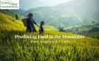 Food Mountain