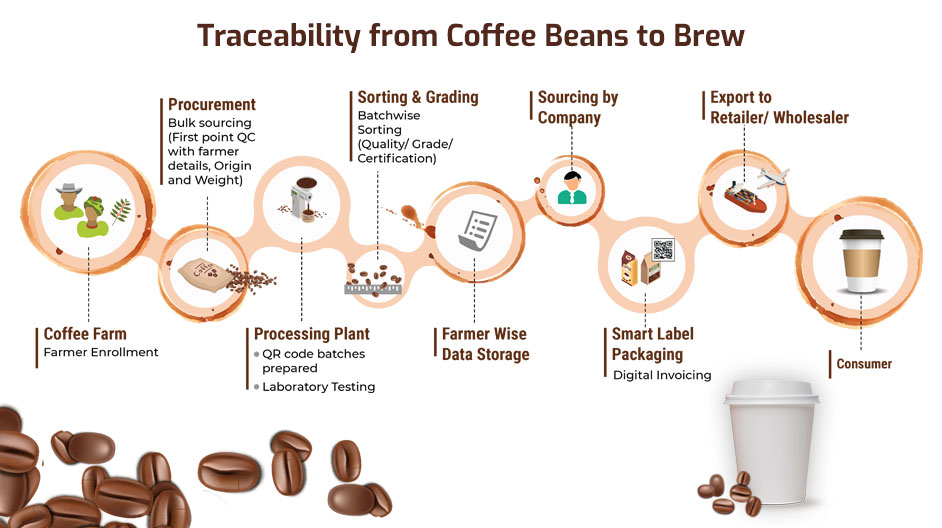Coffee Supply Chain
