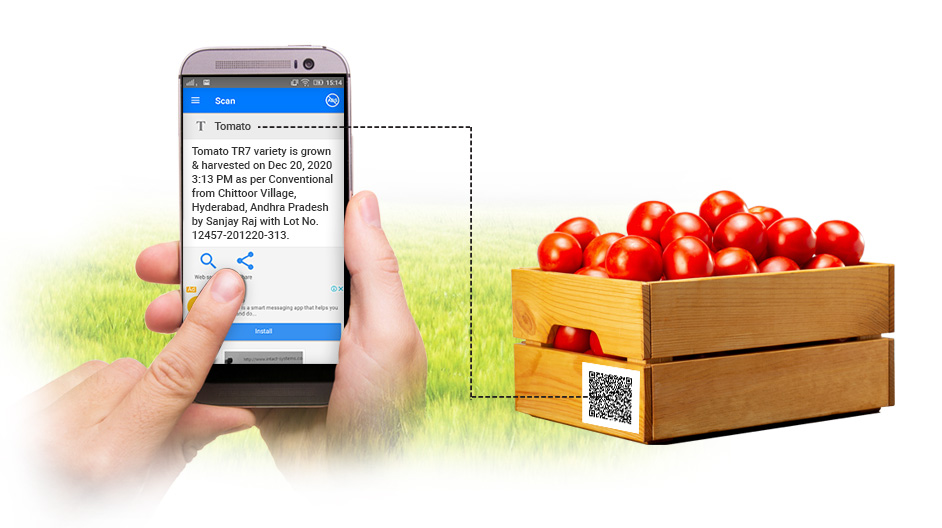Top Trends in Traceability: Fruits and Vegetables Supply Chain