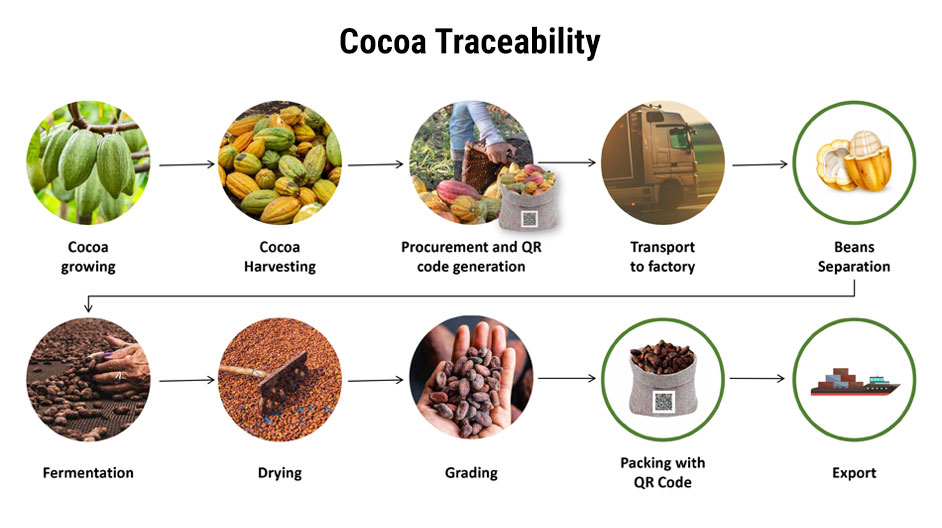 Is your Chocolate Ethical?