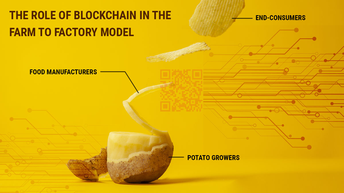 Understand the Farm to Factory Model of the Potato Supply Chain