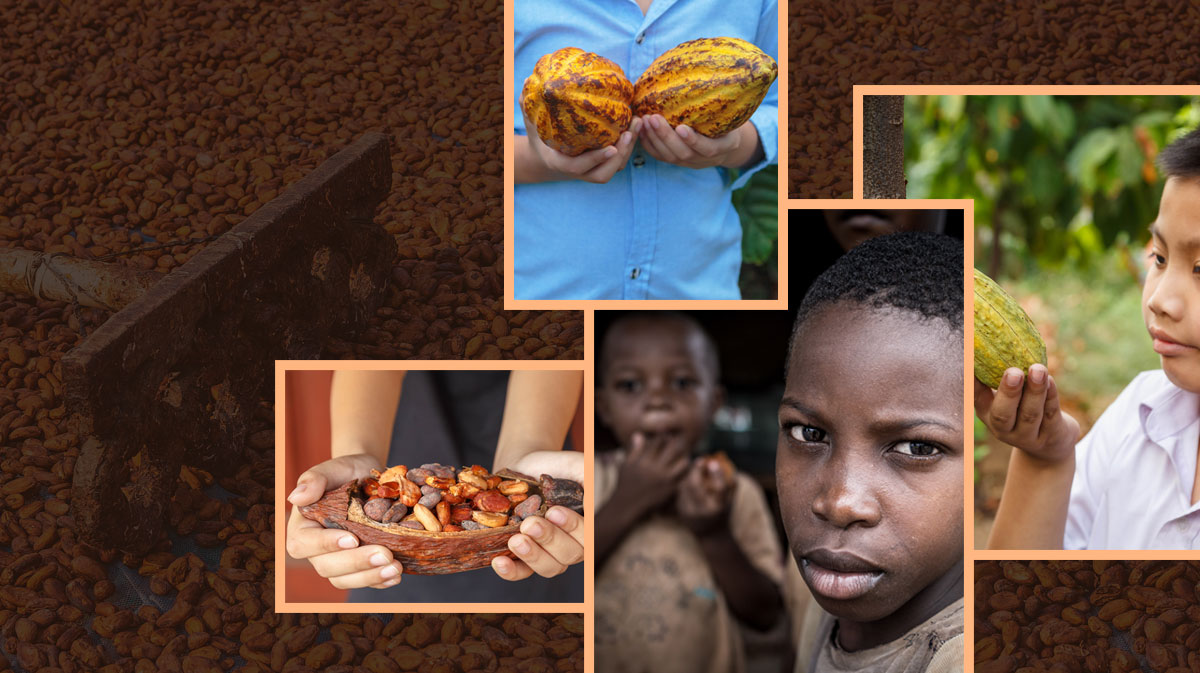 Can Chocolate companies use Blockchain to Eradicate Slavery In The Chocolate Industry?