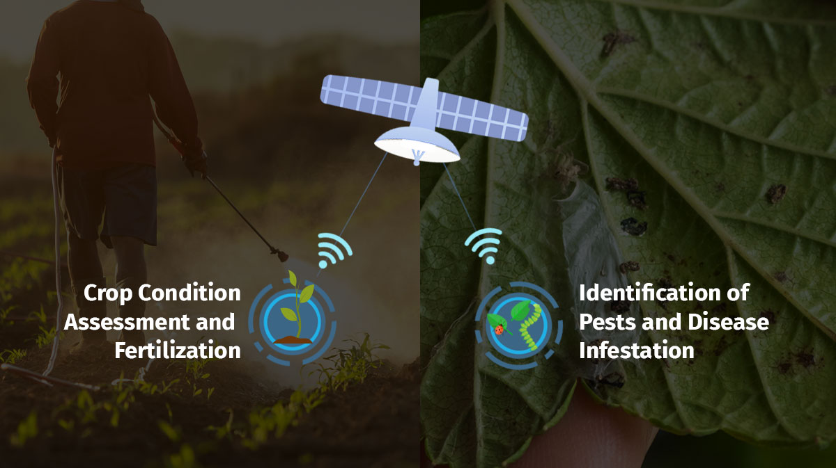 Building Digital Crop Signatures using AI, ML, and Remote Sensing